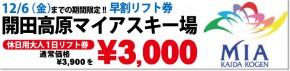 mia_ticket_730_179