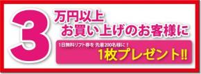 ticket_present_end_730_274