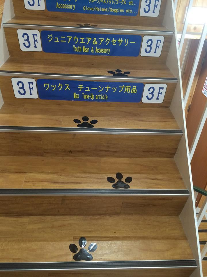 20160716_blog_akita_2