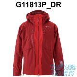 G11813P_DR