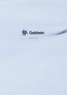 2020-2021 GOLDWIN メーカーカタログ